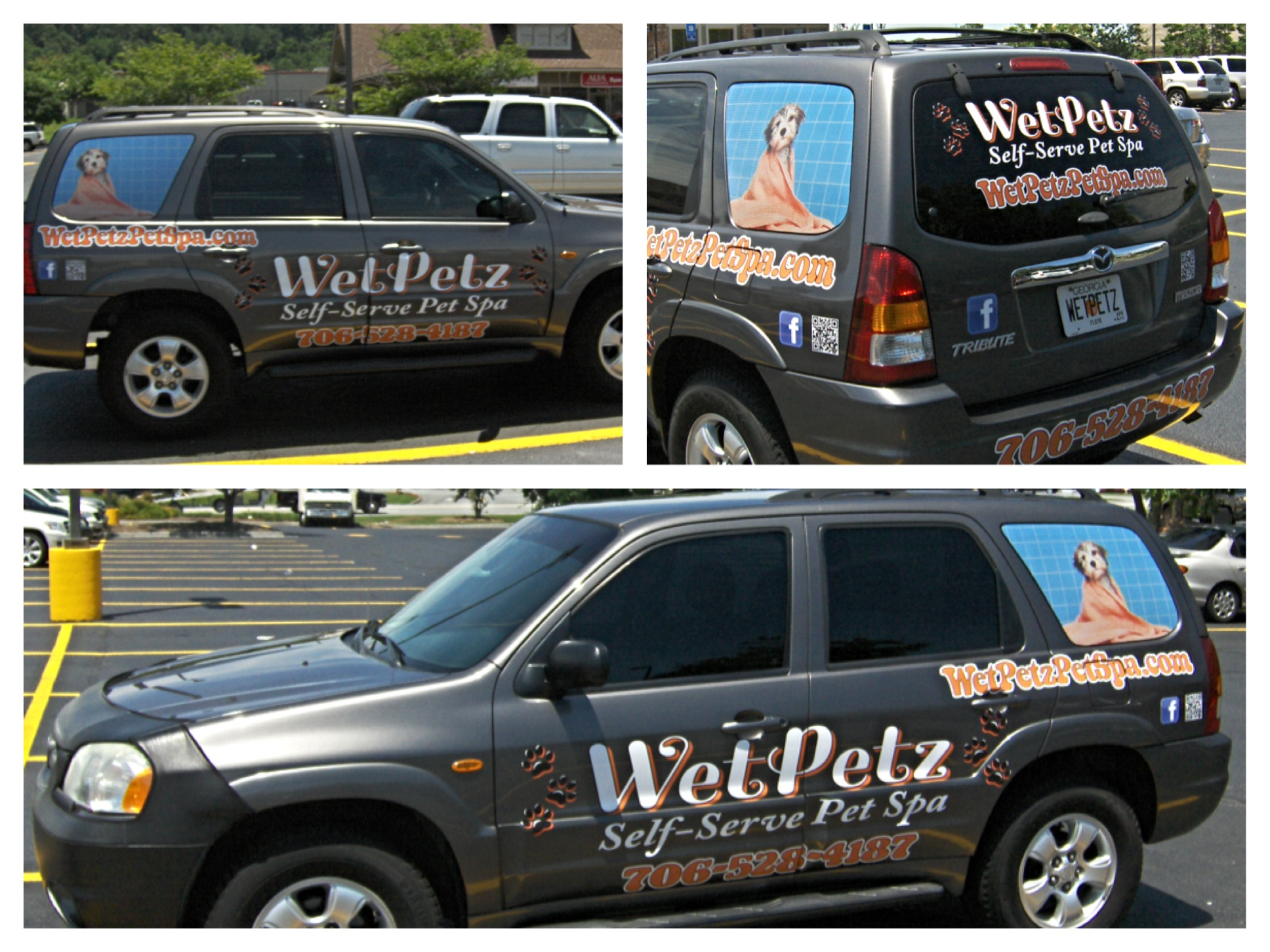 Vehicle-Graphics-Wet-Petz.jpg