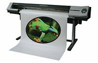 Digital Sign Printing